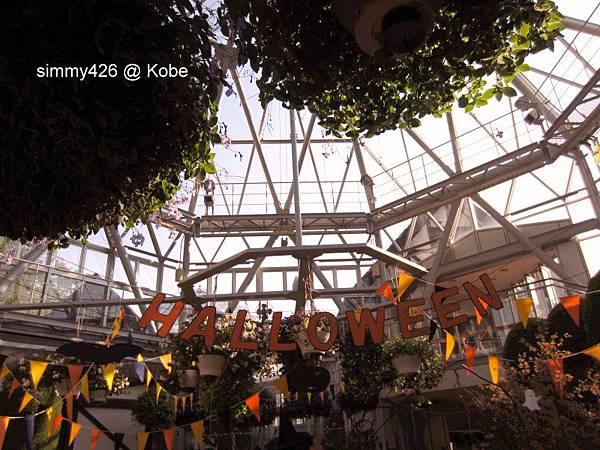 Herb Gardens (39).jpg