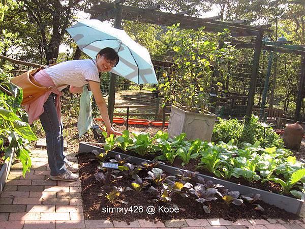 Herb Gardens (35).jpg
