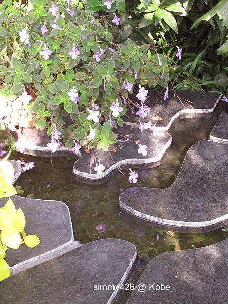 Herb Gardens (61).jpg