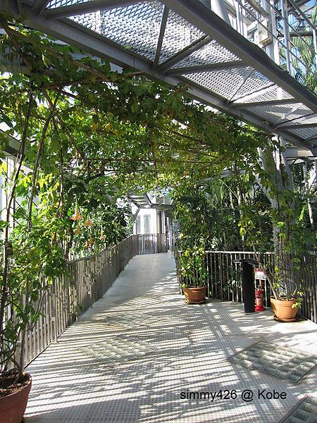 Herb Gardens (67).jpg