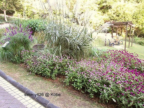 Herb Gardens (83).jpg