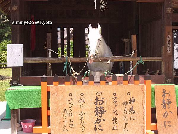 上賀茂神社(5).jpg