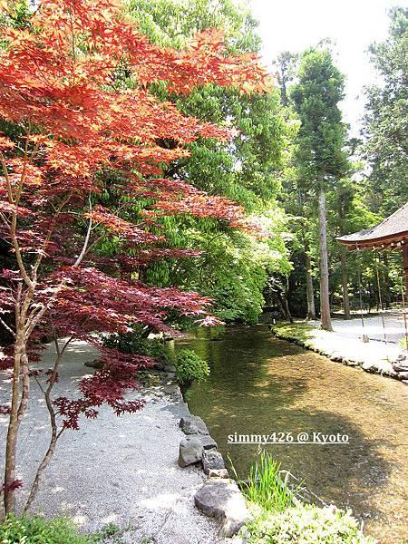 上賀茂神社(12).jpg