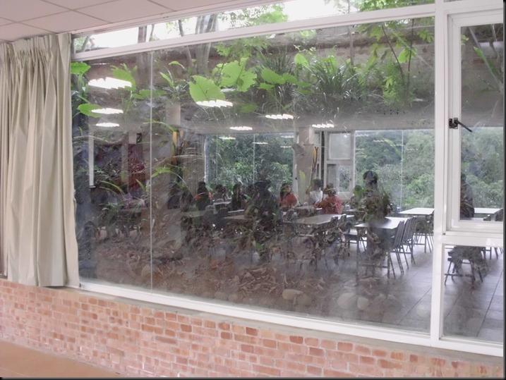 簡報室旁窗戶就是綠色的坡地