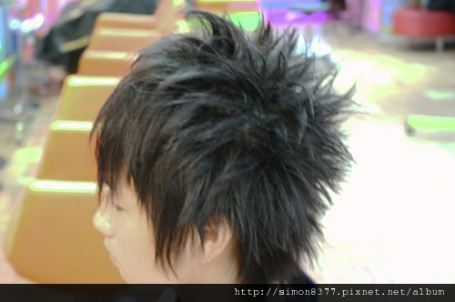 ap_F23_20081129112757343.jpg