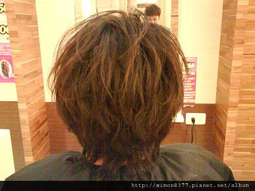 ap_F23_20081030014618423.jpg