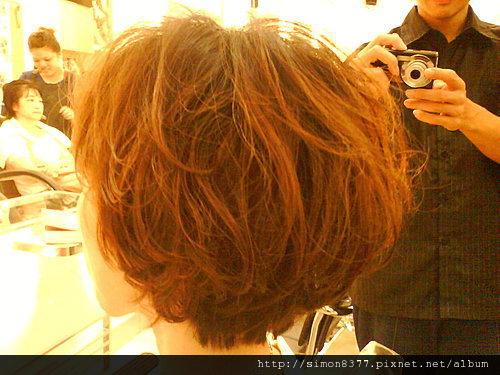 水質感燙_短髮 C型燙 內彎 小三頭