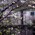 pF_UzZR7OkQTA4iX4jaqAQ.jpg