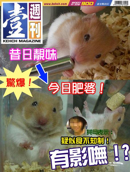 nachiichokan2.jpg