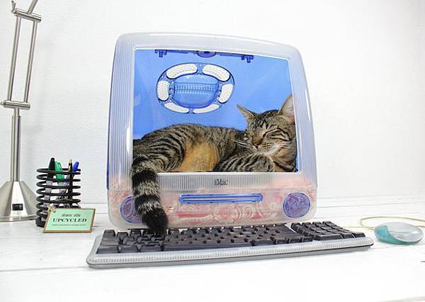 Think-Different-iMac-Upcycled-Pet-Beds-by-Atomic-Attic-1