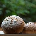 全麥核桃麵包1