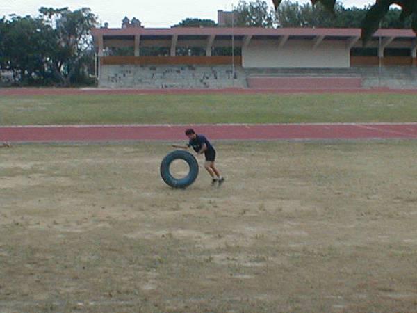 sport (88)