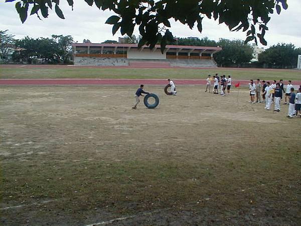 sport (102)