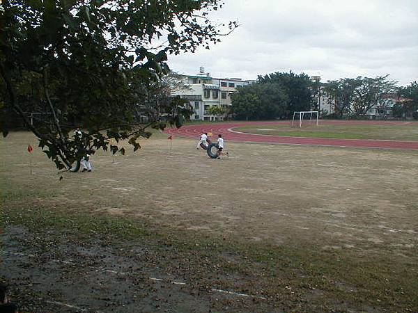 sport (103)