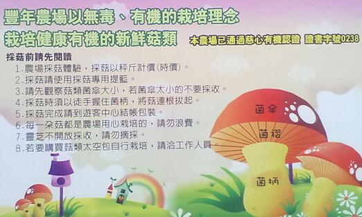 南投-豐年農場3.jpg
