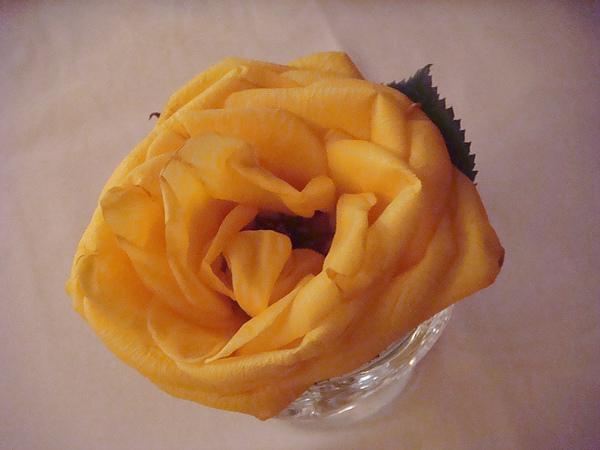 桌上的玫瑰花