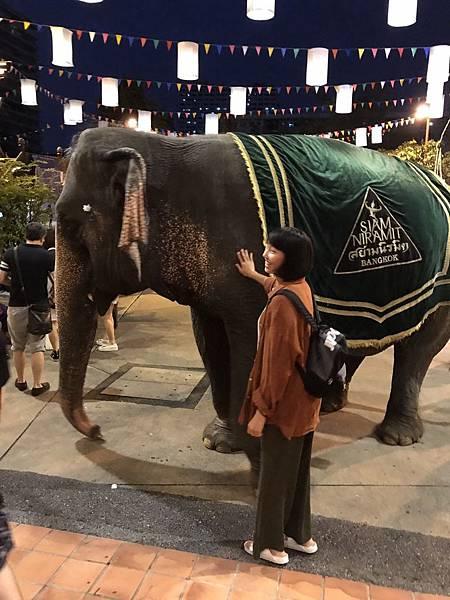 劇場戶外大象合照