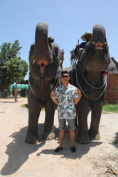 與大象合照1