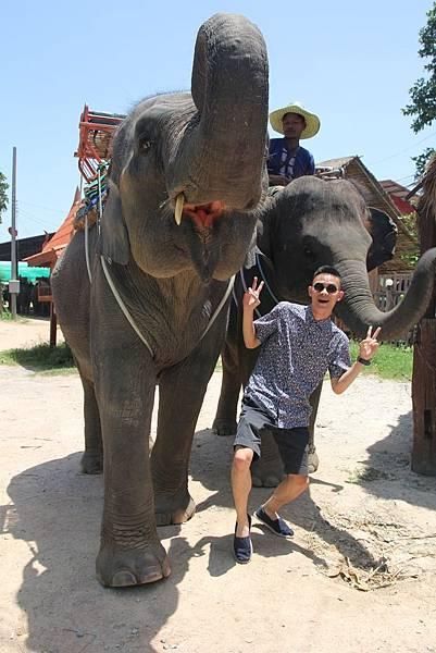 與大象合照3
