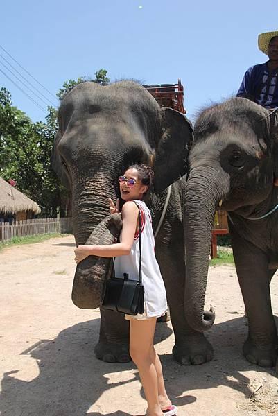 與大象合照4