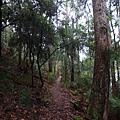 Path of Forth Falls