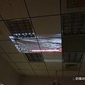 DSC08263_nEO_IMG.jpg