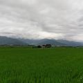 IMAG0046.png