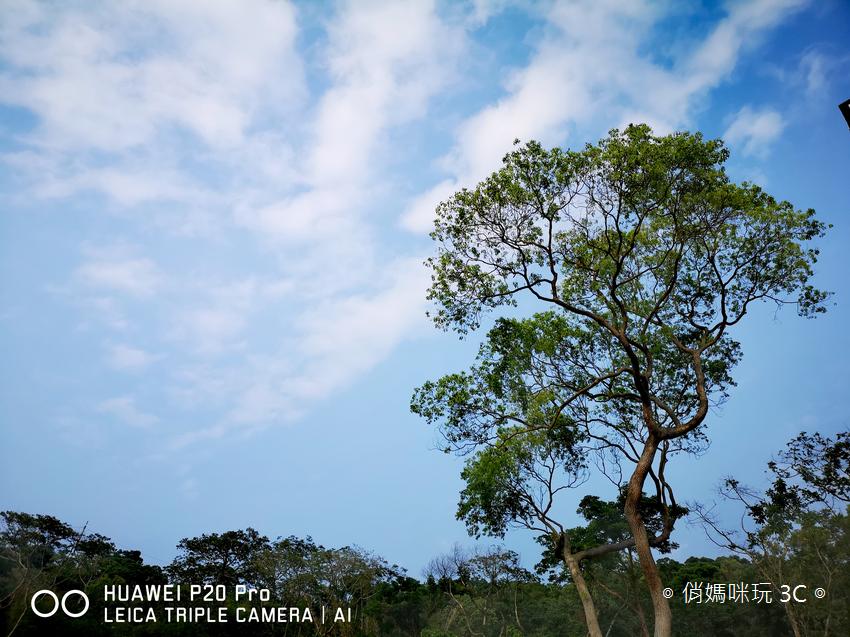 HUAWEI P20 Pro 拍照效果(俏媽咪玩3C)(138).png