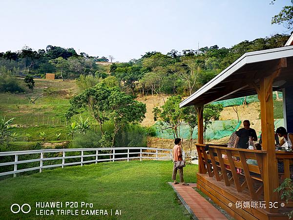HUAWEI P20 Pro 拍照效果(俏媽咪玩3C)(140).png
