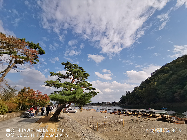HUAWEI Mate 20 Pro 拍照 (俏媽咪玩 3C) (32).png