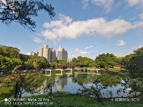 HUAWEI Mate 20 Pro 拍照 (俏媽咪玩 3C) (40).png