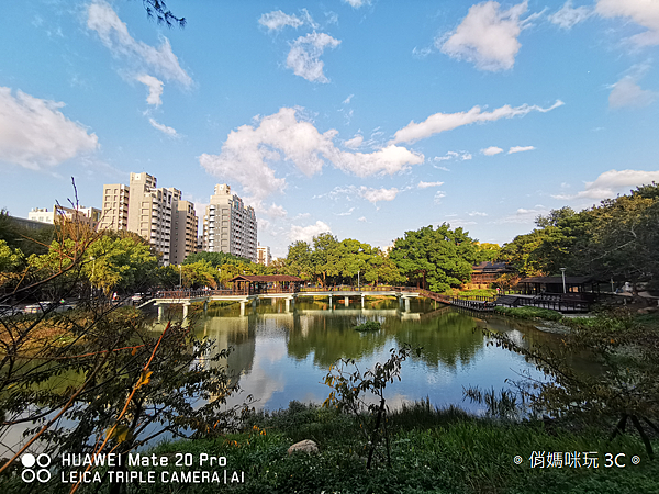 HUAWEI Mate 20 Pro 拍照 (俏媽咪玩 3C) (42).png