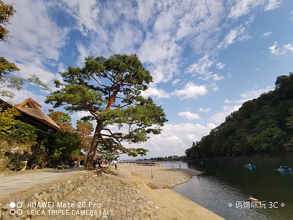 HUAWEI Mate 20 Pro 拍照 (俏媽咪玩 3C) (31).png