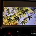 明碁 BenQ GV1 無線行動投影機開箱 (俏媽咪玩3C) (32).png