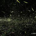HUAWEI P30 拍照 (俏媽咪玩 3C) (41).png