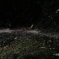 HUAWEI P30 拍照 (俏媽咪玩 3C) (43).png