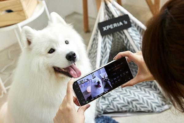 圖說三、Xperia 1 II帶來動物眼即時眼部追蹤對焦功能,搭配高速連拍,輕鬆拍下寵物玩耍的瞬間,甚至連毛流都能清晰捕捉!(1).jpg