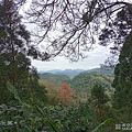 SUGAR S50 拍照 (俏媽咪玩3C) (51).png