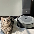 圖說:IG人氣網紅貓桃桃毛髮、皮屑各處飄散,透過Roomba i3+以勁量10倍吸力覆蓋全家,而且毛髮不易纏繞滾刷,日常維護超簡單。.jpg