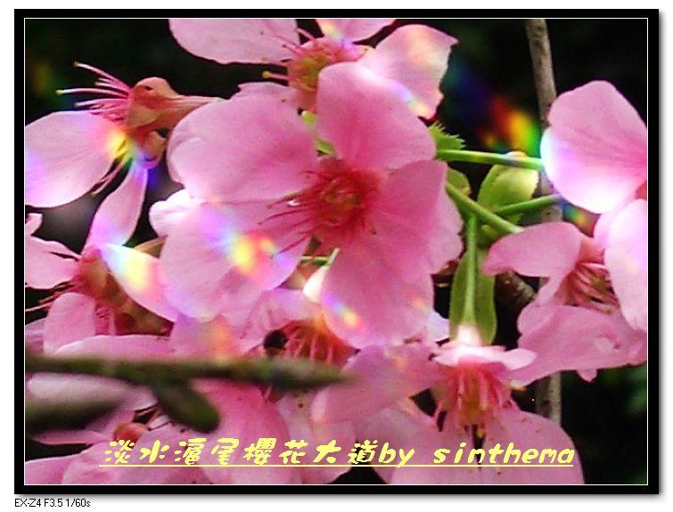 nEO_IMG_CIMG6824.jpg