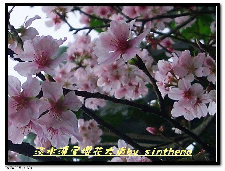 nEO_IMG_CIMG6884.jpg