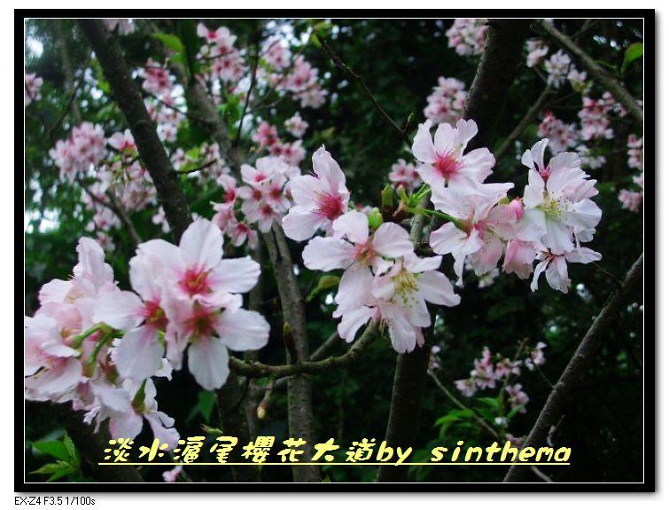 nEO_IMG_CIMG6893.jpg
