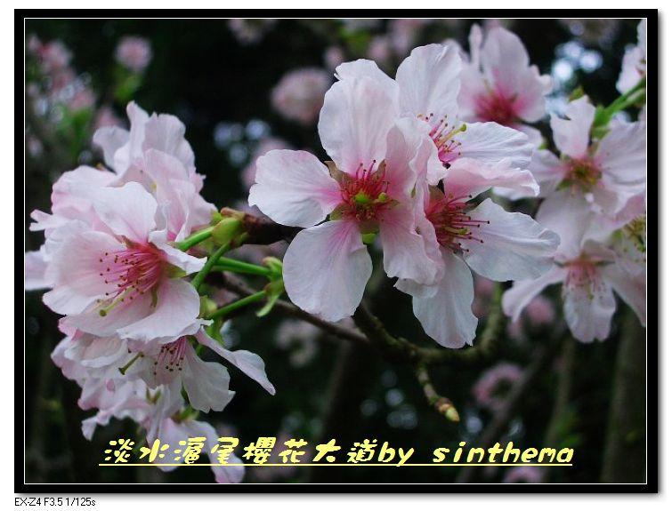 nEO_IMG_CIMG6894.jpg