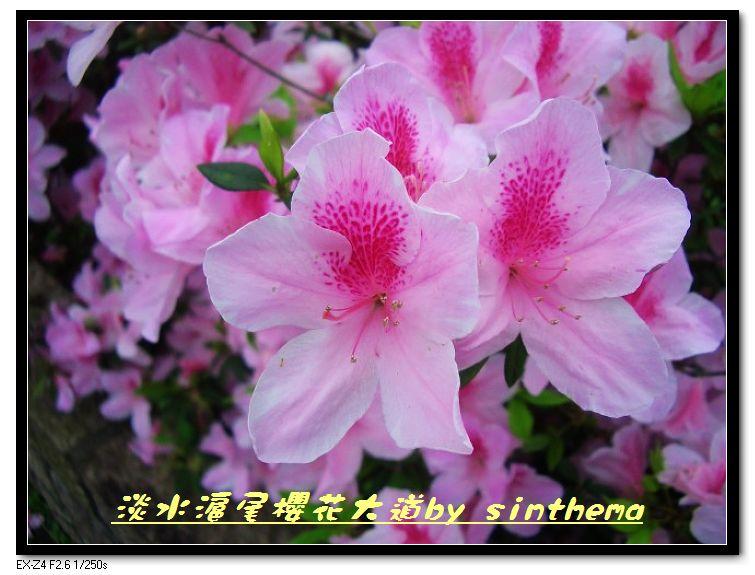 nEO_IMG_CIMG6897.jpg