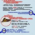 40027316458_file_303389.jpg