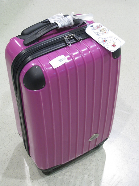 很嬌小的行李箱!!