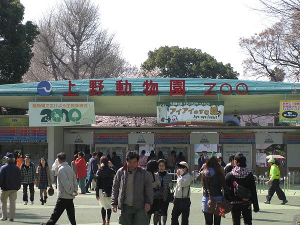 上野動物園到了