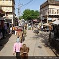2010印度 (14).jpg
