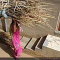 2010印度 (22).jpg