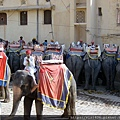 2010印度 (31).jpg